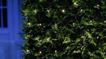 Vianočné osvetlenie Tech-Line - sieť
