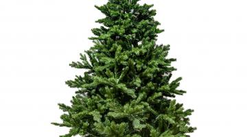 Vianočný stromček Smrek 180cm 2D+3D ihličie