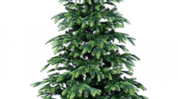 Stromček Tajga 180cm