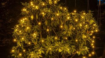 LED svetelná sieť 2m x 1