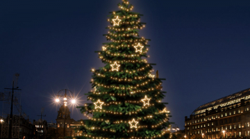 LED svetelná sada na strom 15-17m s dekormi EFD14