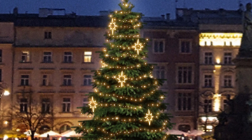 LED svetelná sada na strom 6-8m s dekormi EFD10WS1