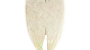 Anjelske krídla na chrbát 43x80cm